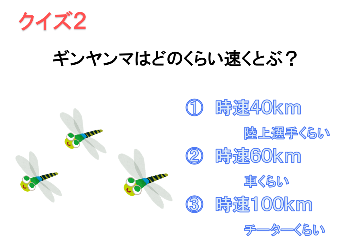 f:id:Hitonoyome:20210817155920p:plain