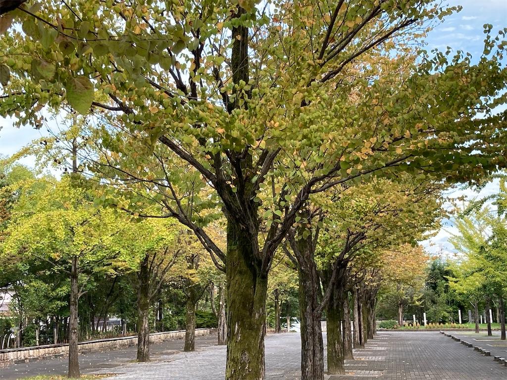 f:id:Hitoyasumisan:20210924161647j:image