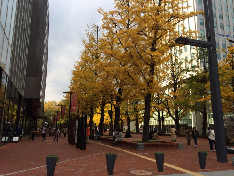 f:id:HokkaidoCUDO:20141025131017j:image:w640