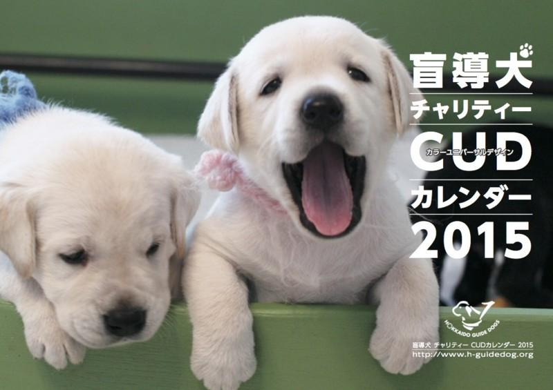 f:id:HokkaidoCUDO:20141210214102j:image:w640