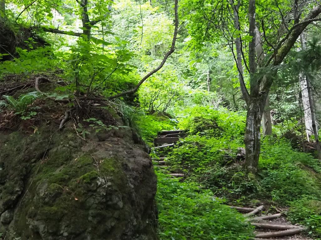 f:id:Hokkaido_nogyo:20210824181055j:image