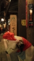 [2010年のクリスマス]