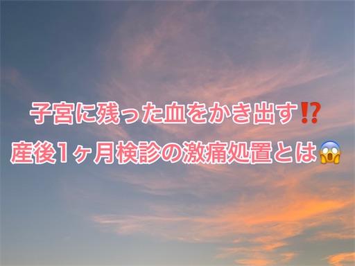 f:id:Honeybee3:20210830092659j:image