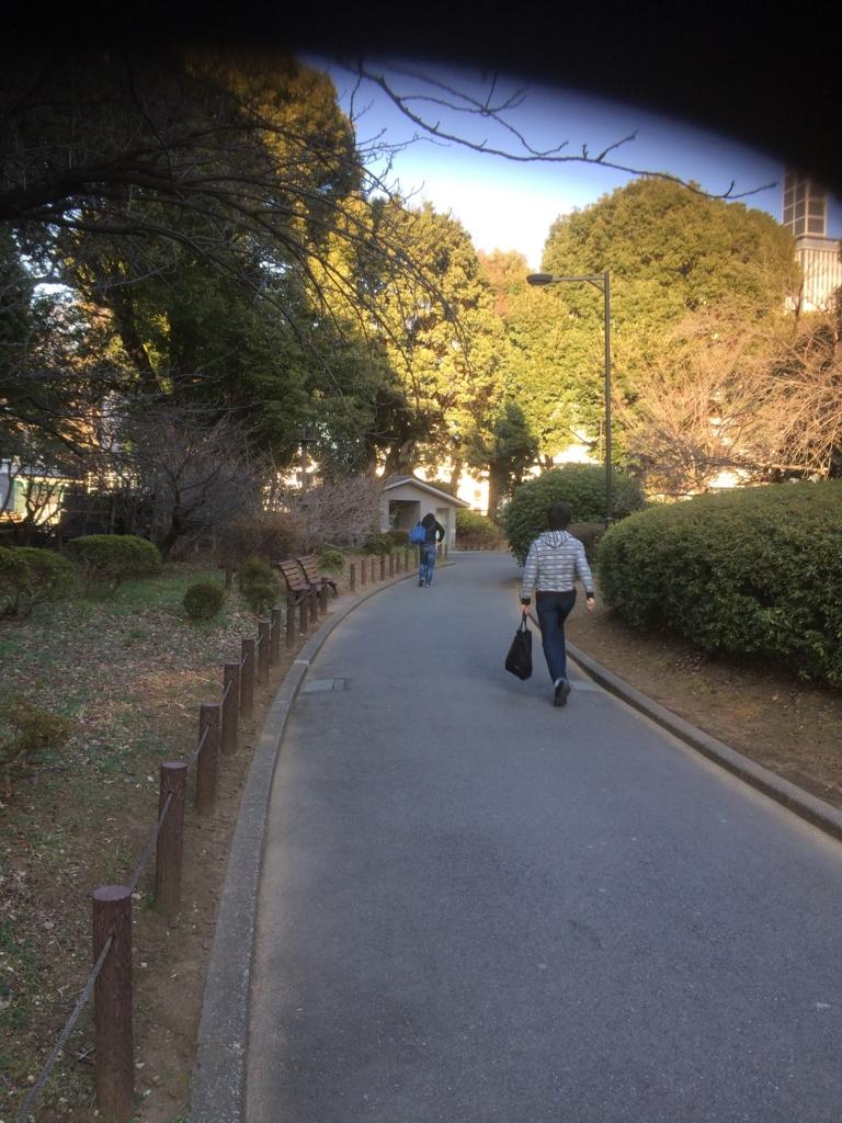 f:id:Honoumi:20170129100103j:plain