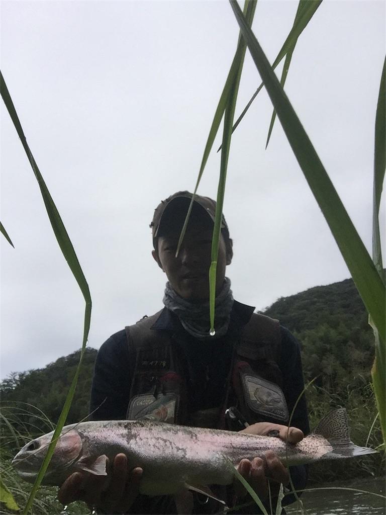 f:id:Hoozuki:20171008124836j:image