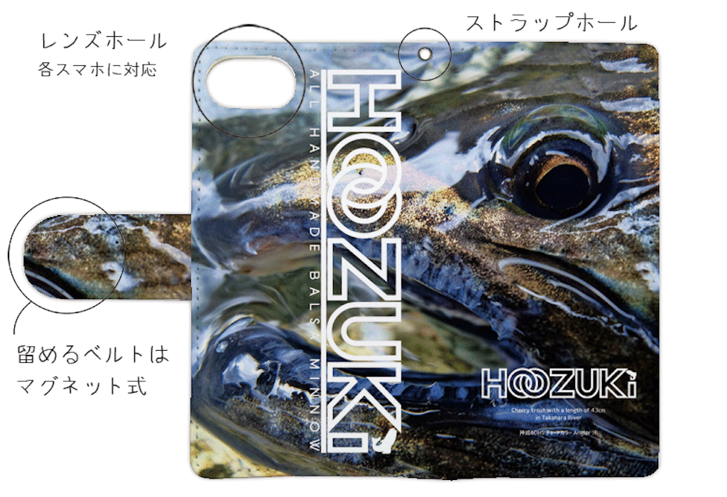f:id:Hoozuki:20180116115528p:image