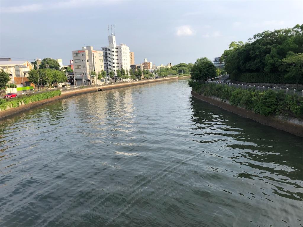 f:id:Hoozuki:20190707210933j:image