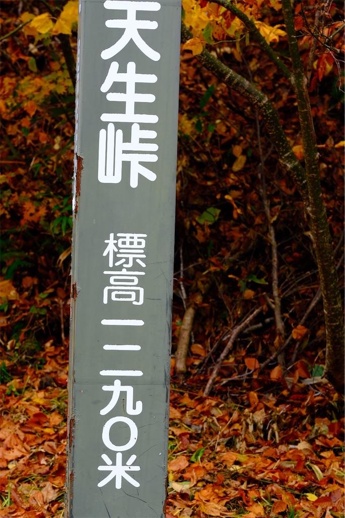f:id:Hoozuki:20191026204000j:image