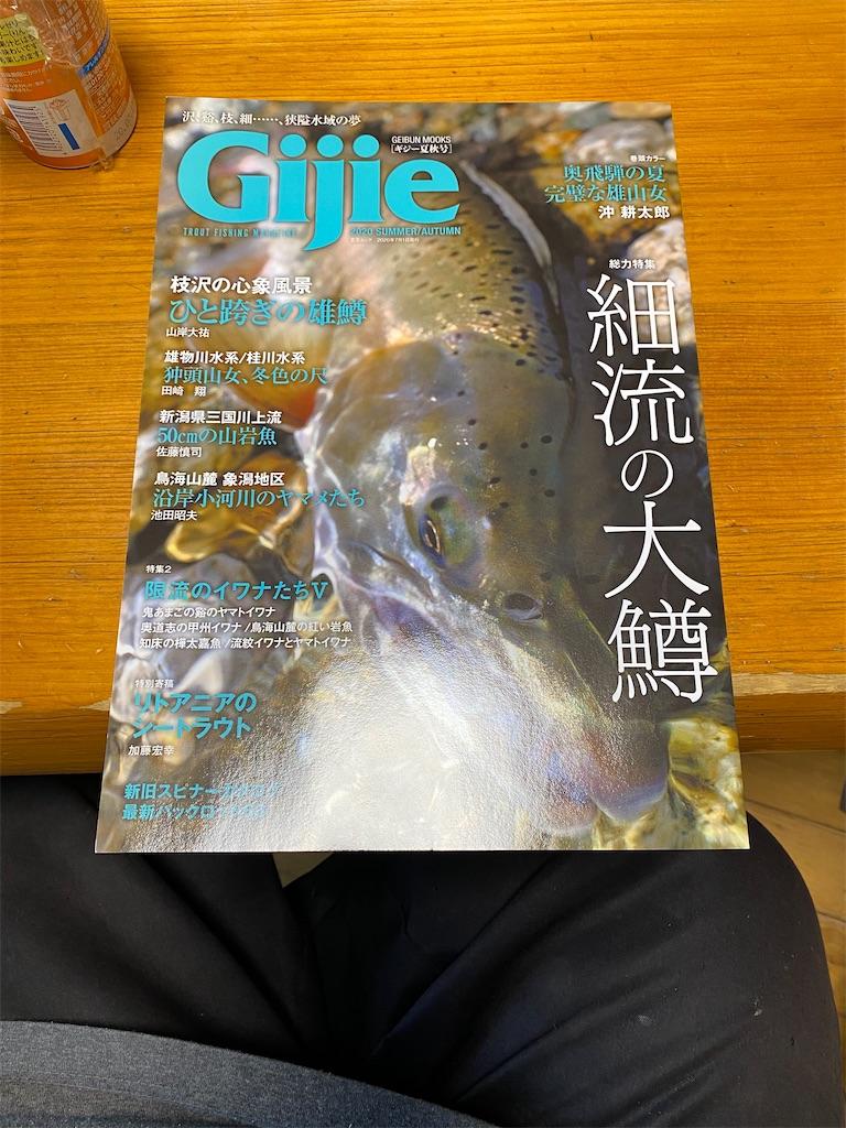 f:id:Hoozuki:20200528172859j:image