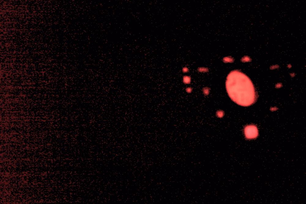 f:id:HosHino:20100101010037j:image