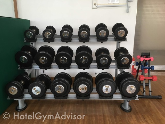 Dumbbells at Best Western Premier Incheon Airport