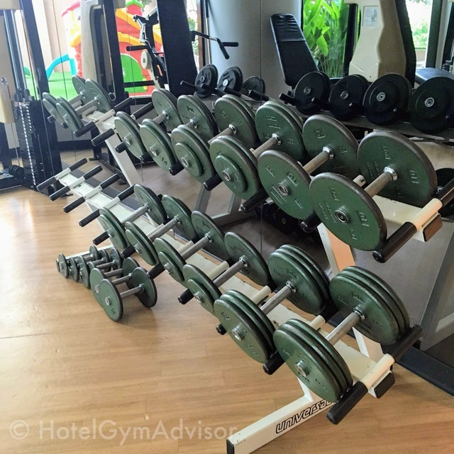 Dumbbells at Somerset Grand Hanoi