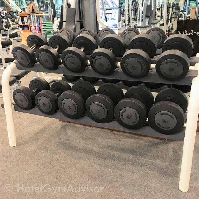 Dumbbells at Melia Hotel Hanoi