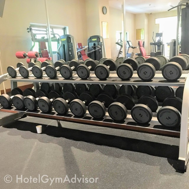 Dumbbells In Sherwood Suites