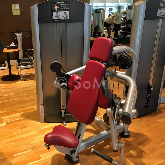 Arm curl machine in Stanford Hotel Seoul