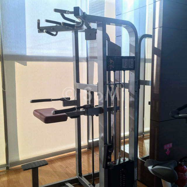 Assisted pull-up/dips machine in Stanford Hotel Seoul