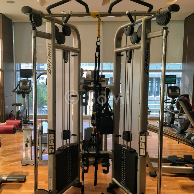 Squat rack in Stanford Hotel Seoul