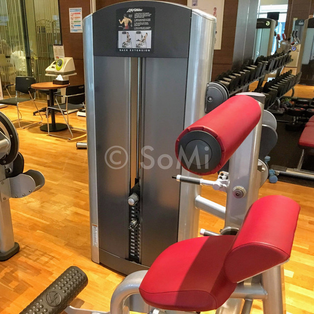 Back extension machine in Stanford Hotel Seoul
