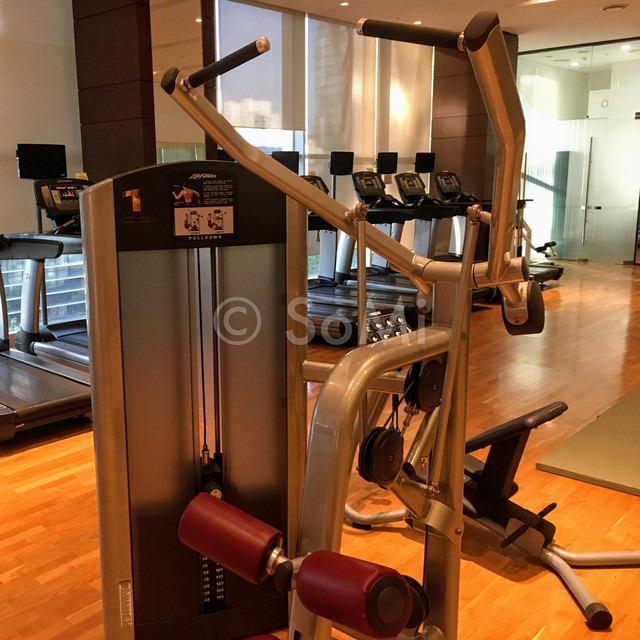 Lat pull down machine in Stanford Hotel Seoul