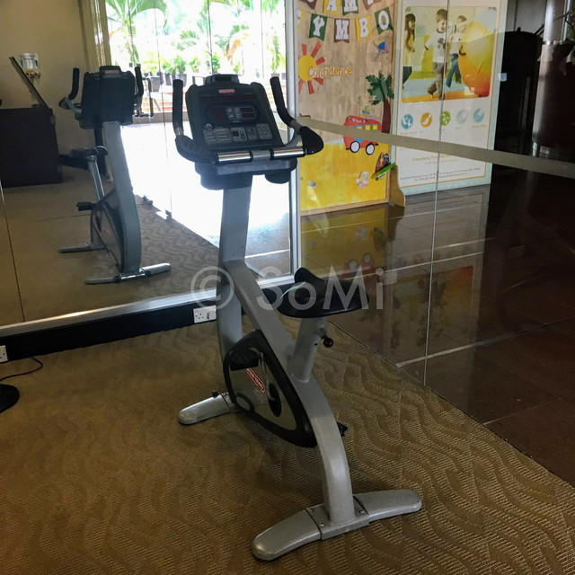 Cardio machines at Somerset Chancellor Court Ho Chi Minh City