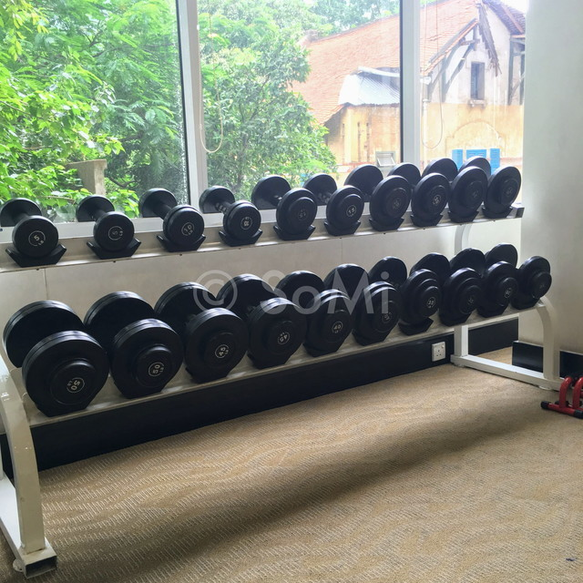Dumbbells at Somerset Chancellor Court Ho Chi Minh City