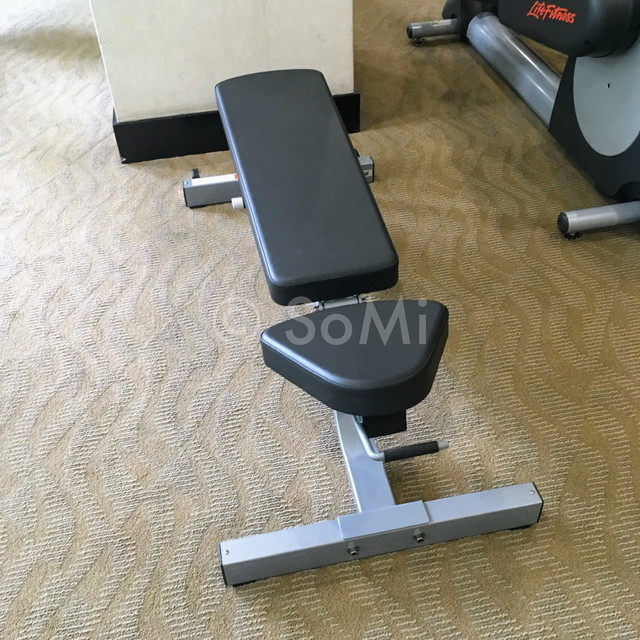 Flat-incline bench at Somerset Chancellor Court Ho Chi Minh City