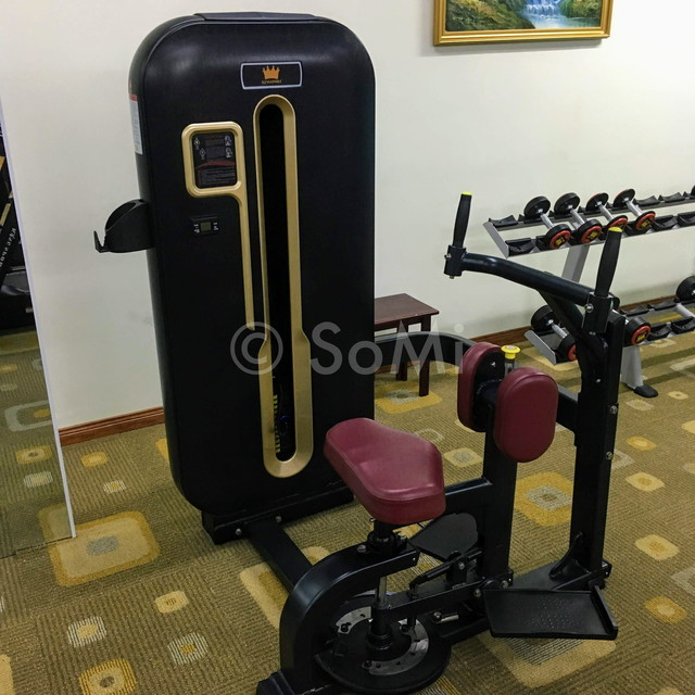 Abdominal machine at Royal Hotel Saigon