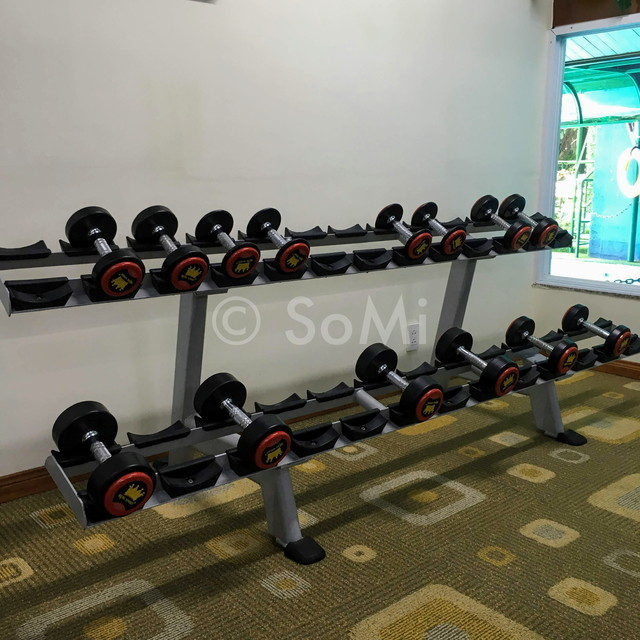 Dumbbells at Royal Hotel Saigon