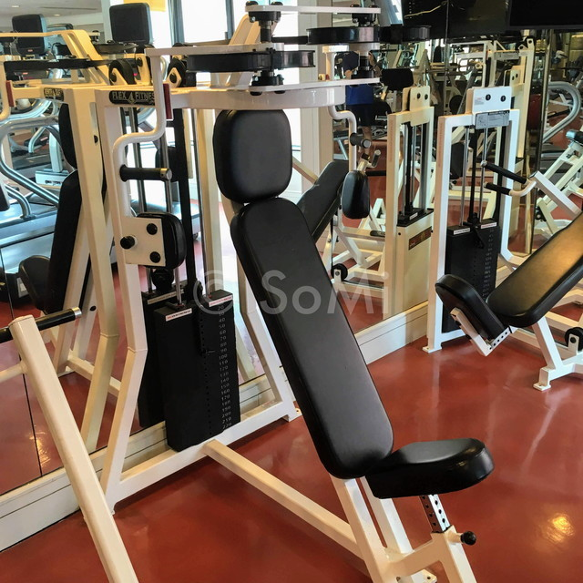 Pectoral fly machine at Renaissance Riverside Hotel Saigon