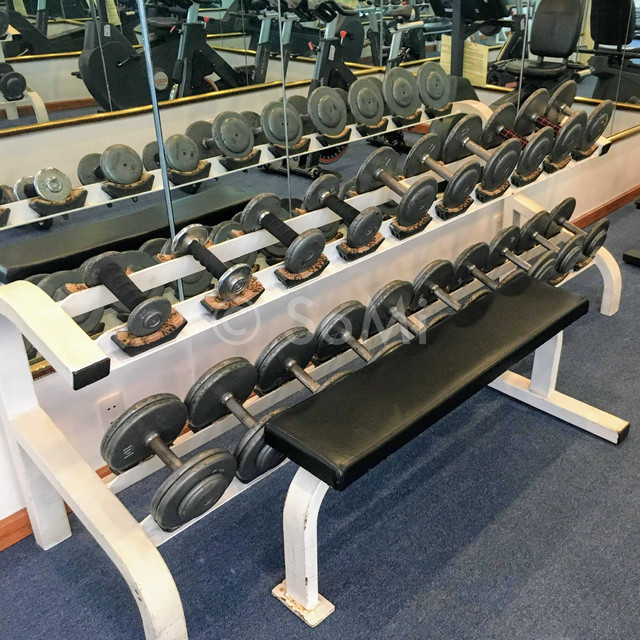 Dumbbells at Hotel Majestic Saigon