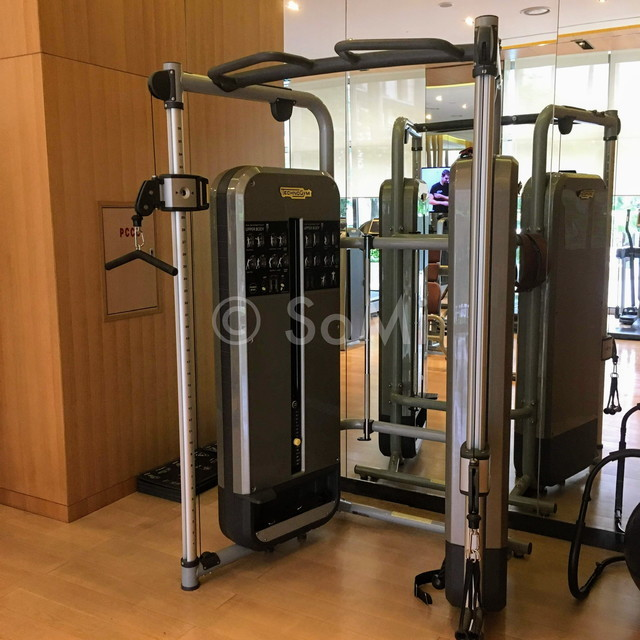 Dual  adjustable pulley at Lotte Legend Hotel Saigon
