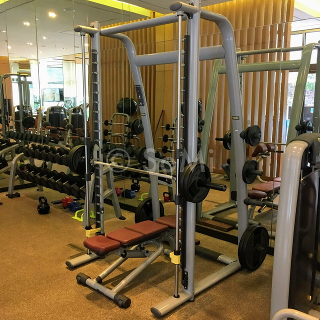 Smith machine at Lotte Legend Hotel Saigon