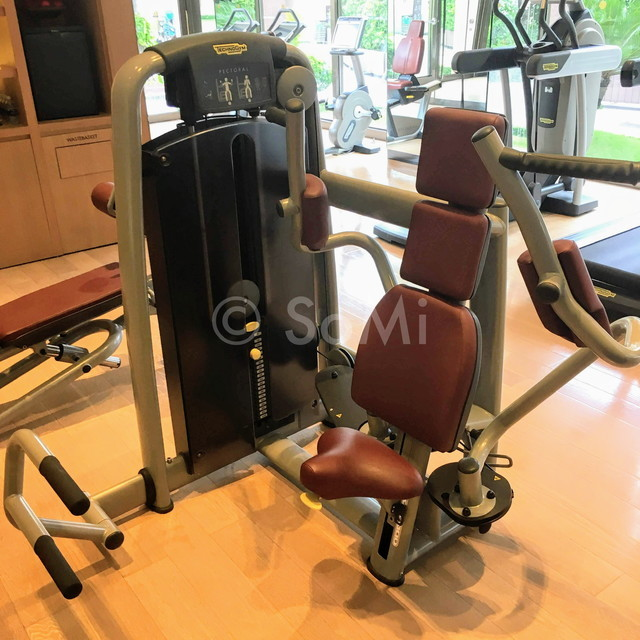 Pectoral fly machine at Lotte Legend Hotel Saigon