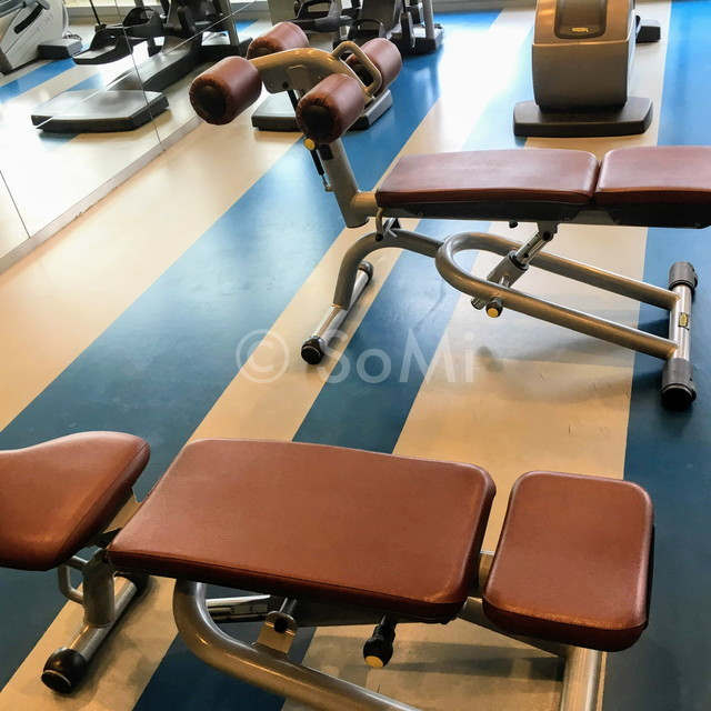 Sit-up bench and adjustable bench in Pullman Saigon Centre Hotel