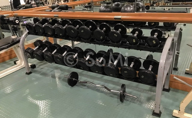 Dumbbells in Hotel Equatorial Ho Chi Minh City