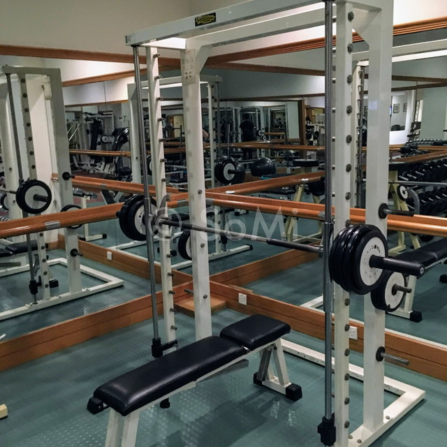 Smith machine in Hotel Equatorial Ho Chi Minh City