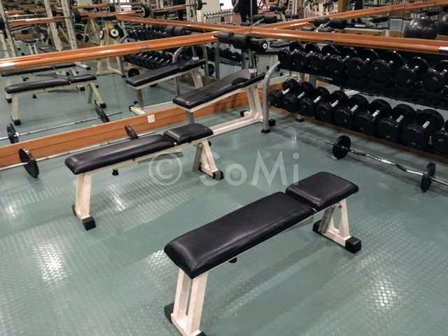 Gym in Hotel Equatorial Ho Chi Minh City