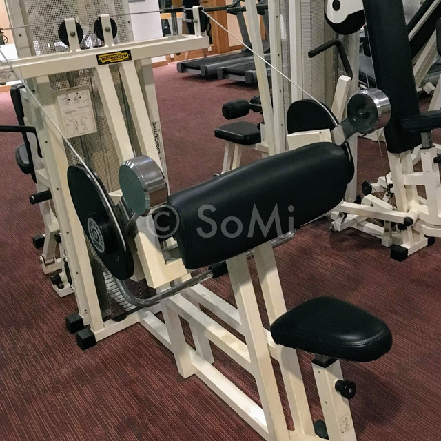Arm curl machine in Hotel Equatorial Ho Chi Minh City