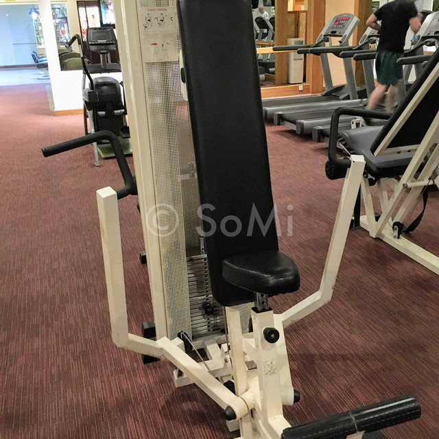 Chest press machine in Hotel Equatorial Ho Chi Minh City