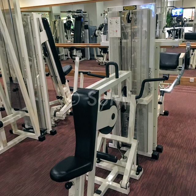 Seated row machine in Hotel Equatorial Ho Chi Minh City
