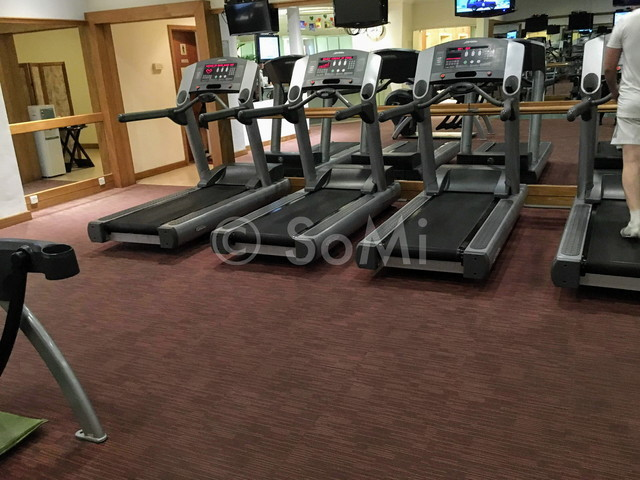 Cardio machines in Hotel Equatorial Ho Chi Minh City