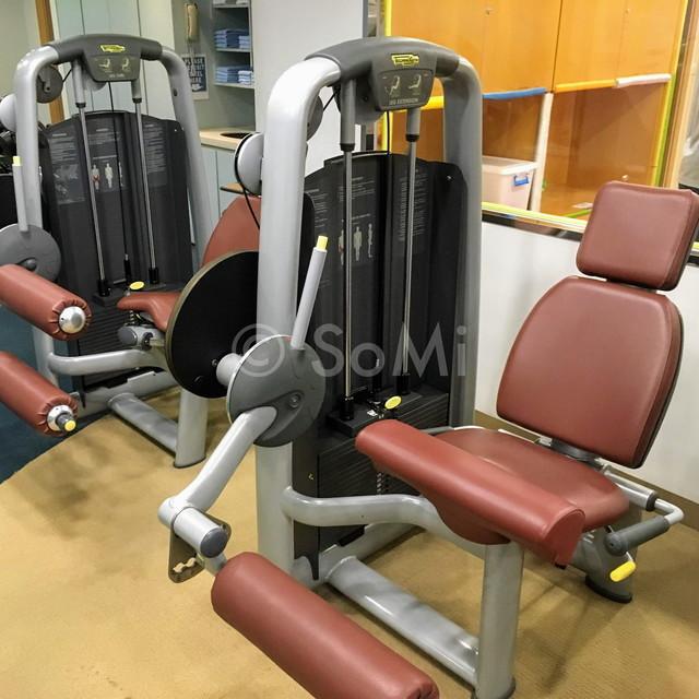 Leg extension machine and leg curl machine in Somerset Palace Seoul