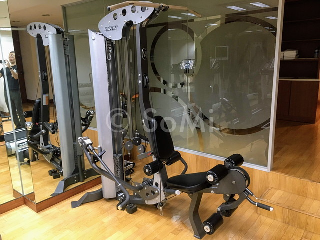 Multi  weight machine in the gym of Best Western Premier Gangnam Hotel