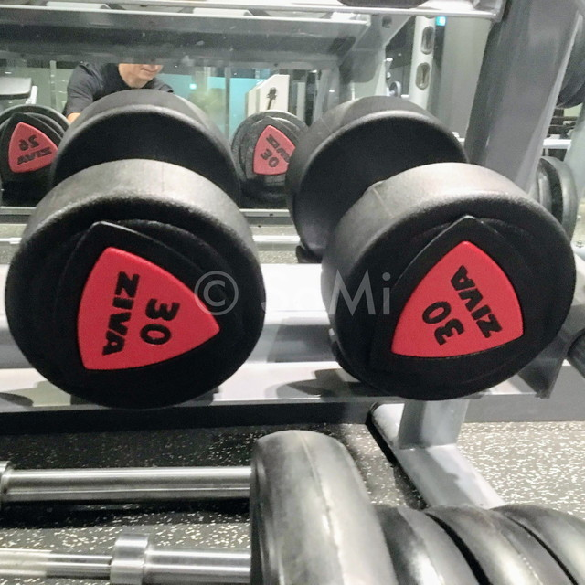 Dumbbells in the gym of Ramada by Wyndham Seoul