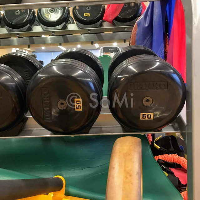 Dumbbells in the gym of Hotel Prima Seoul