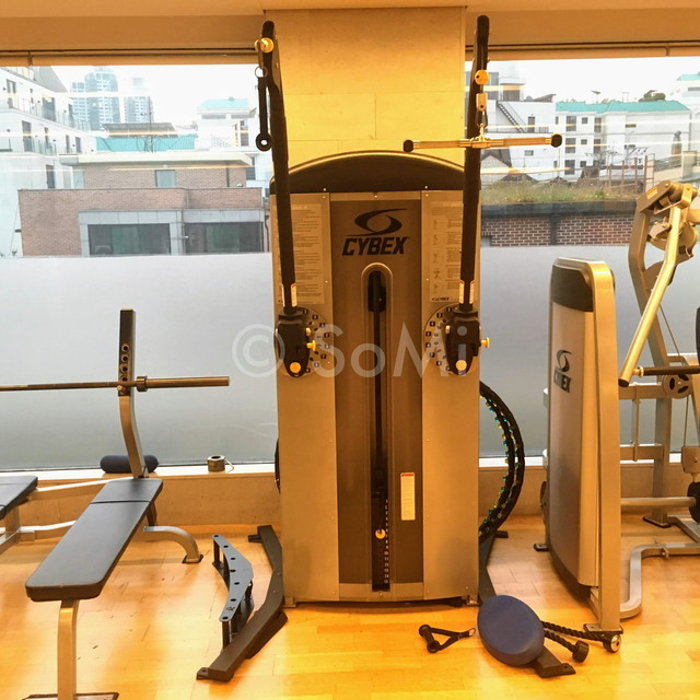 Dual adjustable pulley in the gym of Hotel Prima Seoul