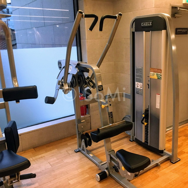Lat pull down machine in the gym of Hotel Prima Seoul