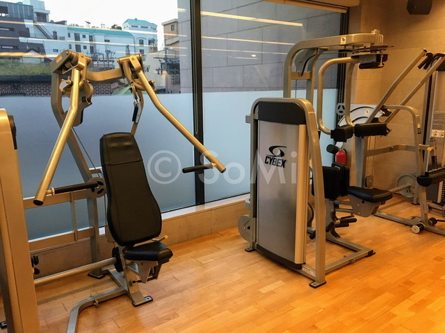Chest press and rotary torso machine in the gym of Hotel Prima Seoul