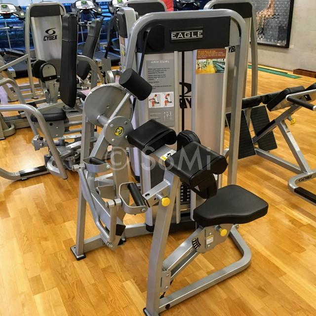 Arm curl machine in the gym of Hotel Prima Seoul