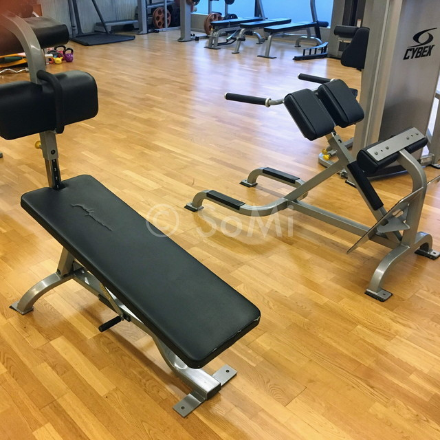 Sit up bench and back extension bench in the gym of Hotel Prima Seoul